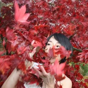 Die Kultur der Natur - Näherungen Japan