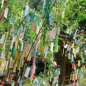 """7.7.2013 Zum Tanabata-Fest: Lesung mit Beate Reker """"Vom Wünschen und Lieben"""""""