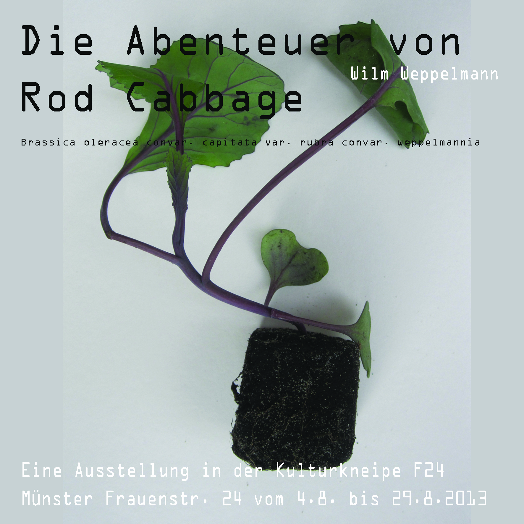 """""""Die Abenteuer von Rod Cabbage II"""" Ausstellung Wilm Weppelmann"""