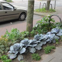Guerilla Gardening und Wilm Weppelmann # 2006 bis 2014