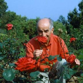 """31.7.2014  21 Uhr  """" Von Rosen und außerirdischen Kohlköpfen – die Welt des Louis de Funès""""  Zum 100. Geburtstag von Louis des Funés mit dem Cineasten Dr. Hans Gerhold"""