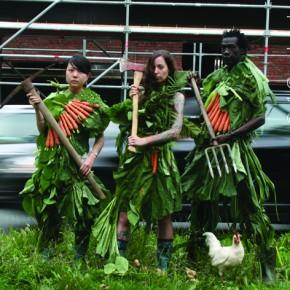 Das war das Programm der 10. Freien Gartenakademie 2015