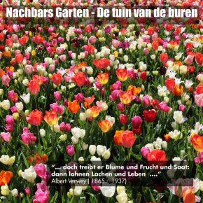 14. Freie Gartenakademie 2019